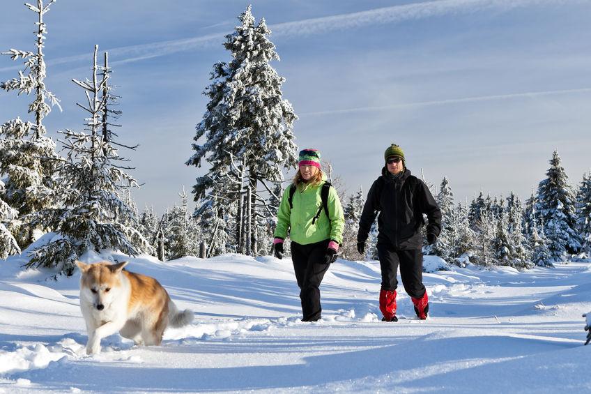 Spaziergänger mit Hund und Gamaschen
